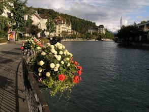 Photo: Thun waterfront