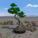 Bonsai 3D Live Wallpaper icon