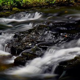 Black Marble by Santford Overton - Landscapes Waterscapes ( landscapes, adventure, places, waterscapes, leaves, light, nature, longexposure, portraits, river, travel, water,  )