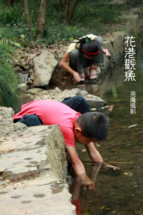 china__f04a