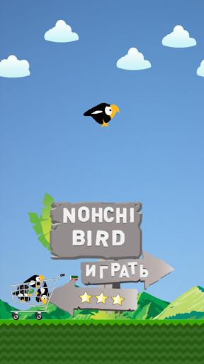 Nohchi Bird