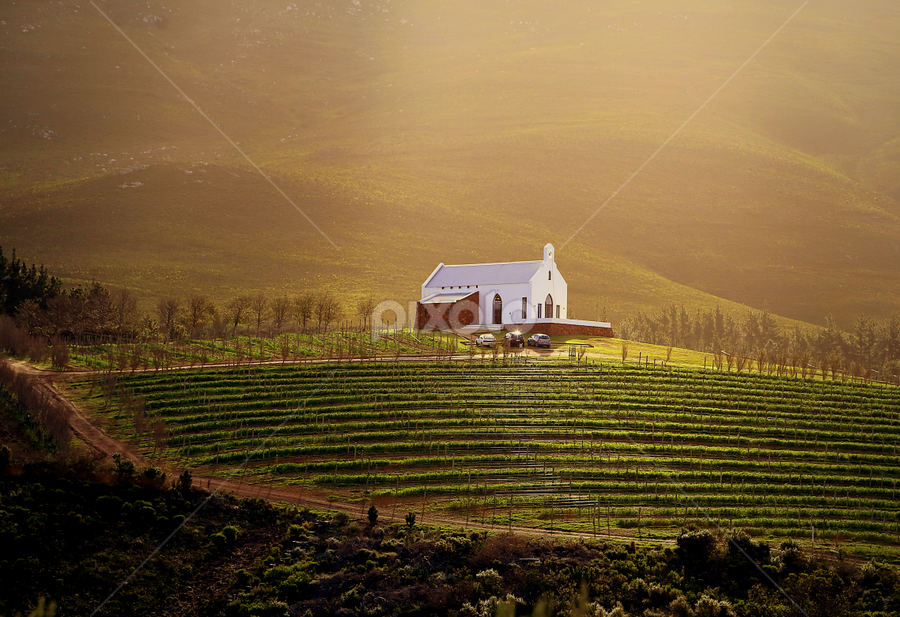 enlighten by Ajay Bhoopchand - Landscapes Prairies, Meadows & Fields ( church, south africa, caledon, ajay bhoopchand, hermanus, light, cape town, western cape )