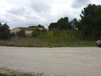 terrain à Arles (13)