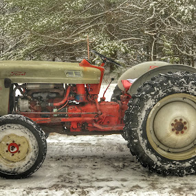 Ford 600 by Patti Pappas - Transportation Other ( michigan, 600, winter, red, snow, plow, ford, antique, tractor )