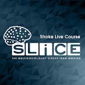 SLICE Stroke LIve Course