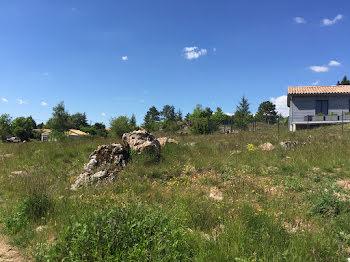terrain à Le Caylar (34)