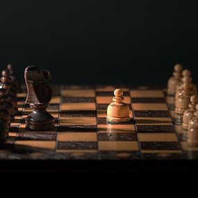 Pawn's attack by Aleksander Cierpisz - Artistic Objects Other Objects ( wood, low key, horse, chess, strategy, low light, game, bokeh, umper, war, knight, lights, open, silouette, wooden, start, shadow, opening, first, light, duel, move, pawn )