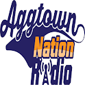 AggTown Nation