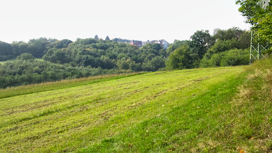 Photo: Blick vom ,RuheForst Philippshöhe' zu demjenigen Teil des Kuhlerkamps, welcher dem Tücking am nächsten liegt.