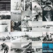 Photo: otro collage ( dic. 2008)  http://www.south-pole.com/p0000098.htm ( en ingles )