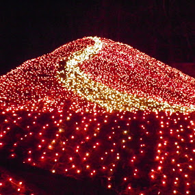 Mountain of lights by Anne Mangen - Public Holidays Christmas ( pwcholidays,  )