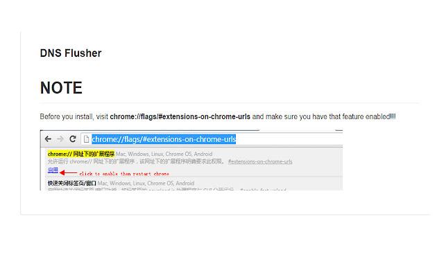 DNS Flusher