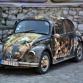 Buba by Radisa Miljkovic - Transportation Automobiles