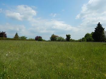 terrain à Champagnac-de-Belair (24)