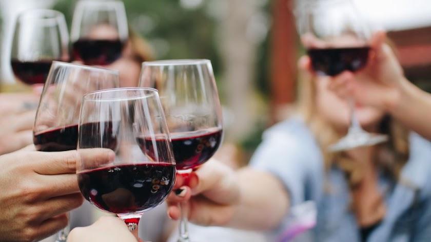 Imagen de archivo de amigos celebrando con una copa de vino al aire libre.