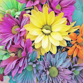 Rainbow Boquet by Johnny Knight - Novices Only Flowers & Plants ( bouquet, nature, colorful, artistic, flowers, spring, painting, floral )