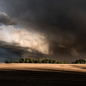 Spring Storm Clouds by D L - Landscapes Weather ( cloud, spring, mn, storm, field, minnesota, rural, clouds, thunderstorm, goodhue, trees, welch )