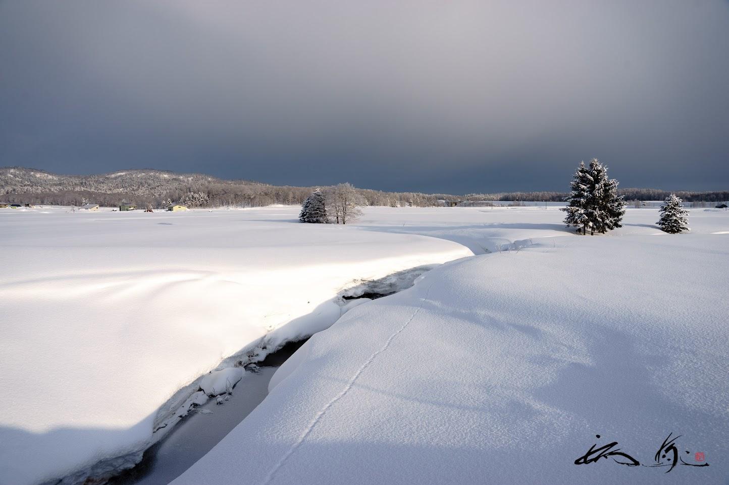 土を覆う雪野原