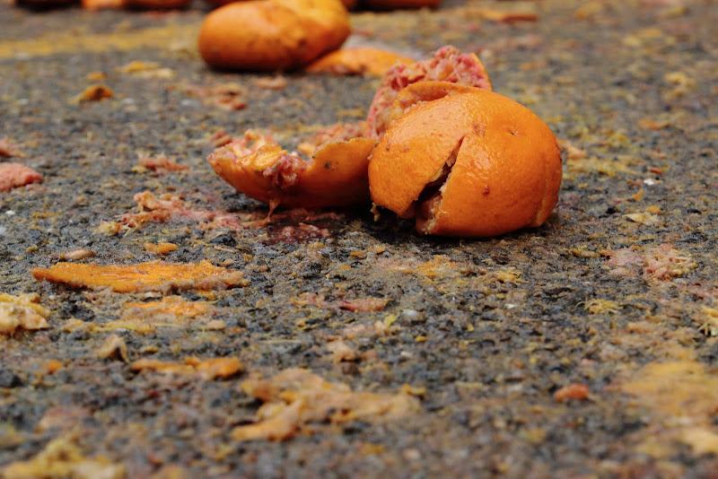 Frammento di Battaglia di OrangeAttitude