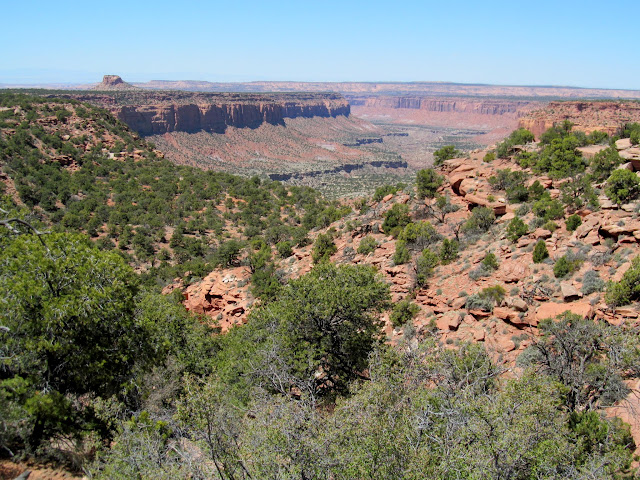 View down Happy Canyon from near Flint Seep