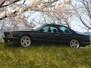 M6 E24 1987のカスタム事例画像 ホッシーさんの2020年04月15日16:25の投稿