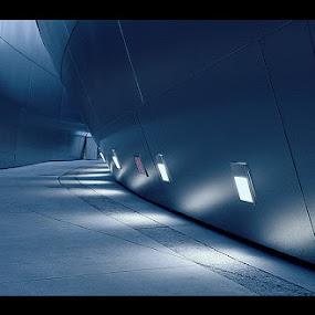 Los angeles by Jerzy Szablowski - Buildings & Architecture Architectural Detail ( philharmony, la, disney )