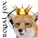Royal Fox Estate Agents