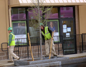 "Photo: Installing trees and shrubs. Wait, isn't that called ""planting""?"