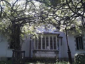 Photo: The Star House