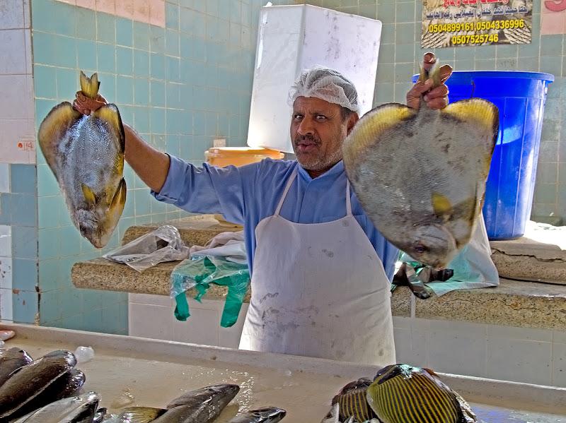 Pesce frescooo...!!! di Francesca Malavasi