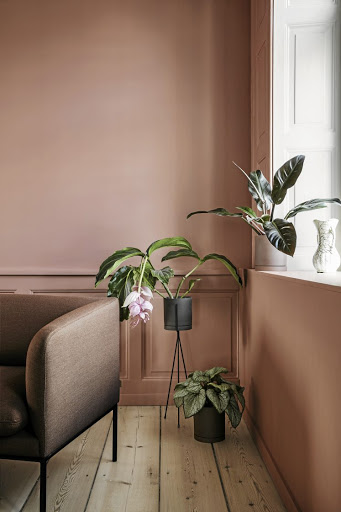 Indoor plants keep your air free of toxins.