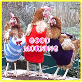 Good Morning Greeting Messages