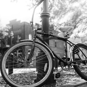 Project #3 Aperture Effected Image - The Bicycle Collection by Wesley Spear III - Transportation Bicycles ( building, handle, wheel, sharp, wire, handle bar, brick, cable, road, blur, steel, grip, spoke, bokeh, tire, bicycle, bike, gear, metal, aluminum, focus, brake,  )