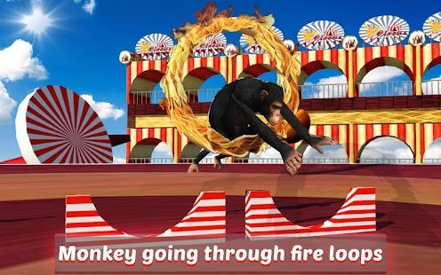 Goat-Monkey-Stunts 8