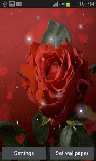 Magical Red Rose LWP