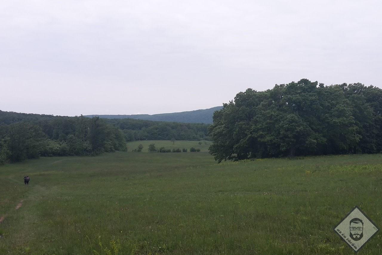 KÉP / Vértestolna határában