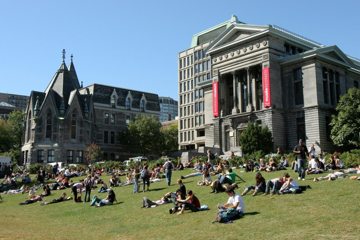 Image result for mcgill university image