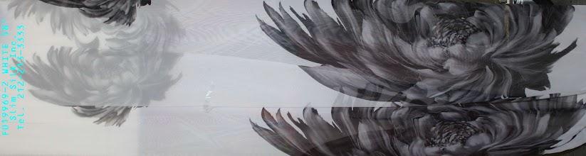 Photo: F019969-02 WHITE
