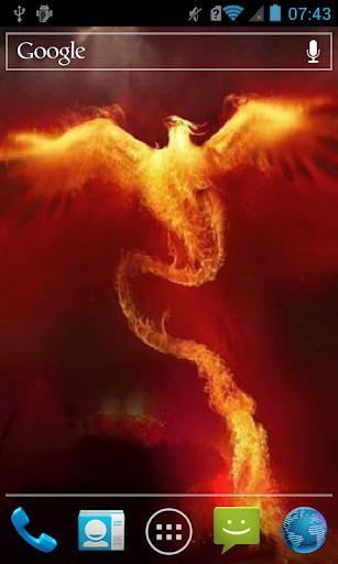 Bird made of fire Live WP