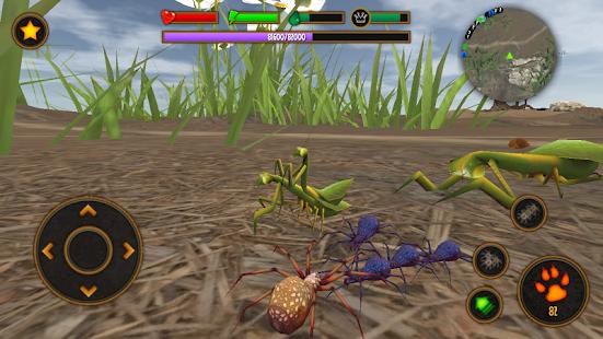 Life of Spider screenshot