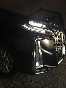 アルファード AGH30W sのカスタム事例画像 yukisawaさんの2018年11月30日19:44の投稿