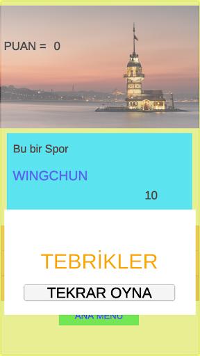 Kelime Oyunu+ screenshot 4