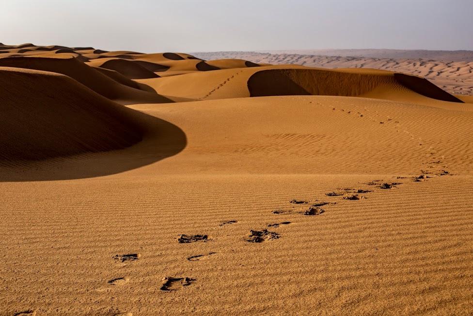 Oman, pustynia, wydmy, ślady na piasku