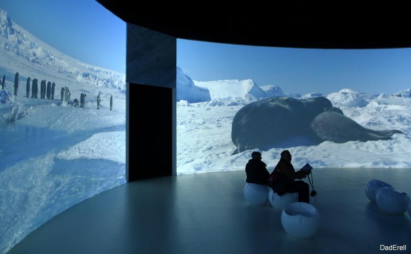 Exposition Antartica, Musée des Confluences, Lyon