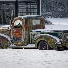 Bertelsen Winery  by Todd Reynolds - Transportation Automobiles