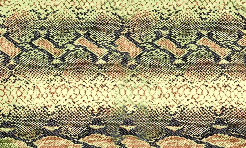 reticulated python skin
