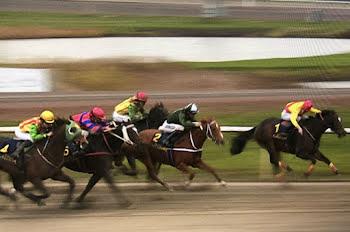 Freemanip logró ganar dos carreras en Suecia en cinco días