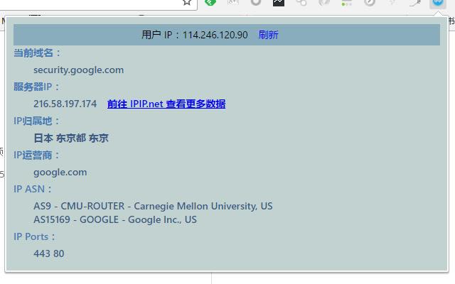 WebSite IP Information Query