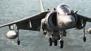 Harrier thumbnail