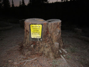 Photo: Strange sign at Spring Creek Pass. Wonder if the sign was there before the tree was chopped?